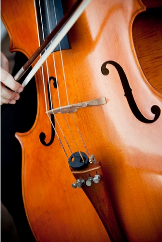 One of our cellos
